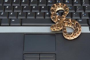 Snake Malware Not Detected By Antivirus for 8 Years