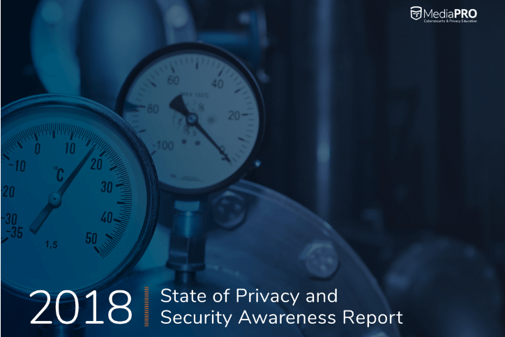 2018-state-privacy-security-awareness-report_724x483
