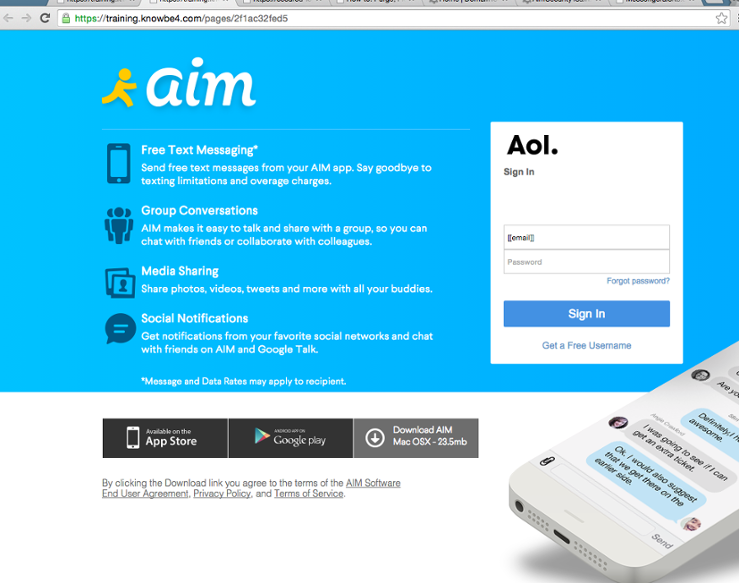 The landing page of the attack