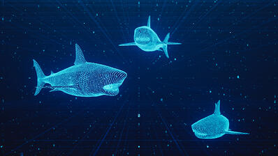 Number of Phishing Sites Doubled