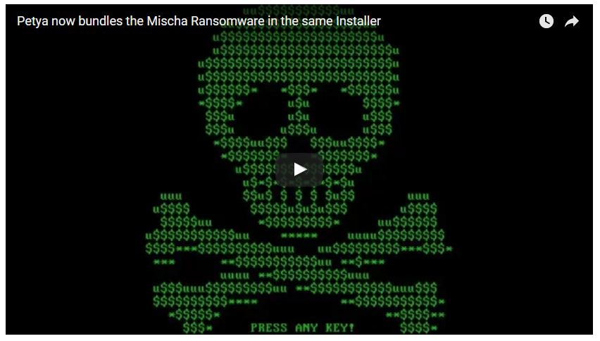 Petya/Mischa Ransomware Installer Video