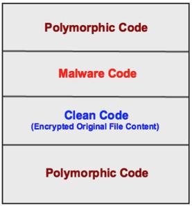 Virlock Polymorphic Code