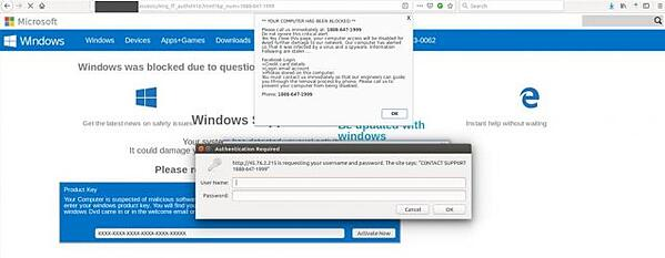 fake-microsoft-support-page-640x249