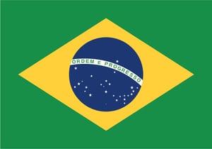 Brazilian Government Ransomware