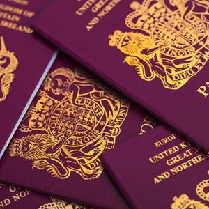 irish passport picture