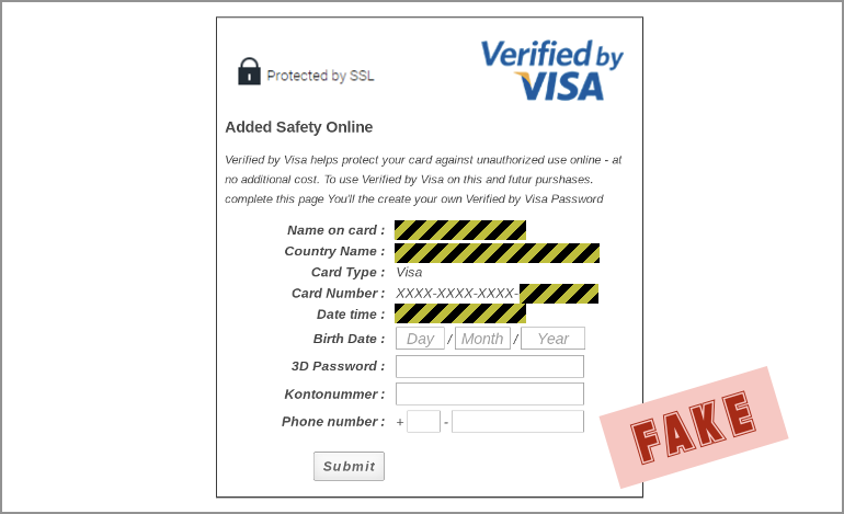 fake Visa verification page
