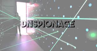DNSpionage. Image