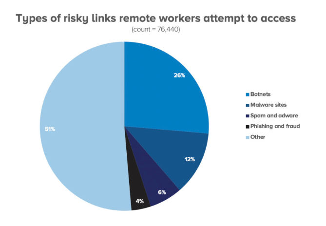 It's Worse Than You Thought: Remote Employees Interaction with Unsafe Websites is Up 50%